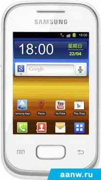 Samsung Galaxy Pocket Plus (S5301)
